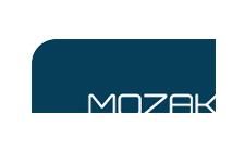 mozak2